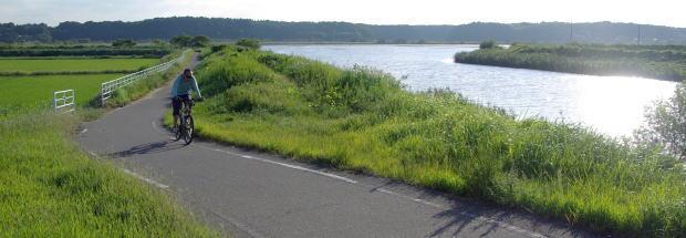自転車の 自転車 千葉ニュータウン : ... :千葉ニュータウンを走る